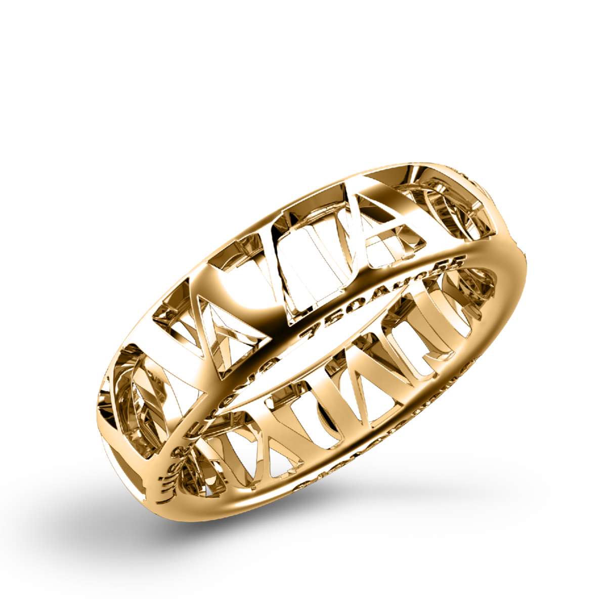 Characters Ring 6.0